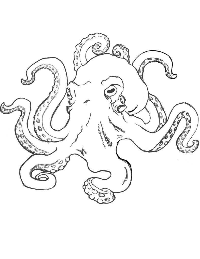 Line Art Octopus : Octopus wip by tsubatsu on deviantart