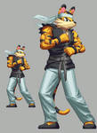 tcgamerboy2002 Commission- Shoto Akiyama Stance