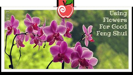فنگشویی/ انرژی گلها و گیاهان