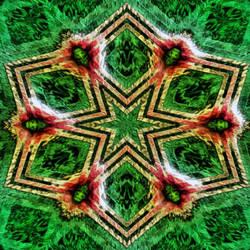 Star Design by Ganymede105
