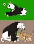 bullterrier and lynx