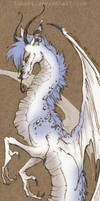 spotted dragon