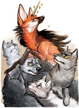 unicorn among wolves