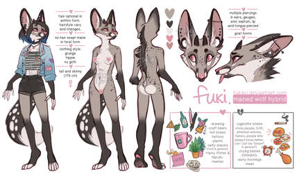 Ref Sheet Done1 by Fukari