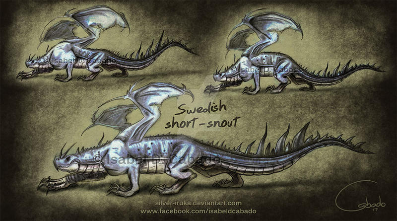Swedish short-snout dragon sketches by Silver-Iruka on ...