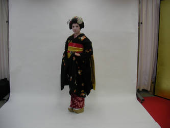 Artist as a Maiko by foxesdemonica