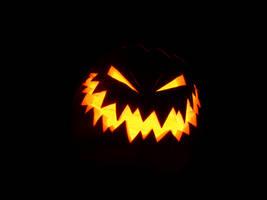 Pumpkin5 by fuchi