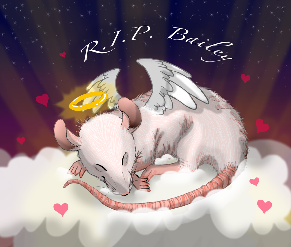 R.I.P. Bailey by iFoxSpirit