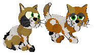 .:Cali. Co:. Kittens for Sale (Catz5) by Kyarii-chan