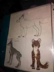 Wolf, Doberman and tiger