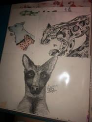 Bengal, Shepherd, wolf and cheetah