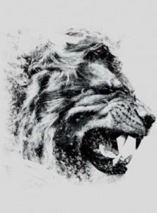 Samphisher's Profile Picture
