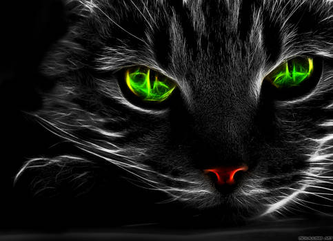 Fractal Green Eye Cat