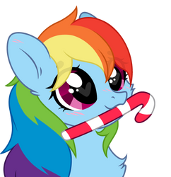 Fluffy Dash Candy Cane