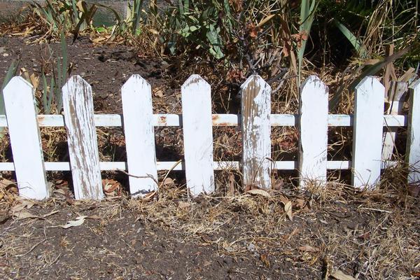 fence 1 by dridgett-stock