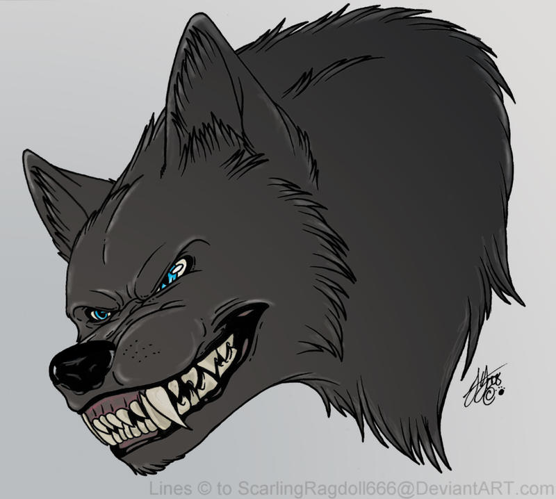 Angry Wolf - By ScarlingRagdol by Cemetric on DeviantArt