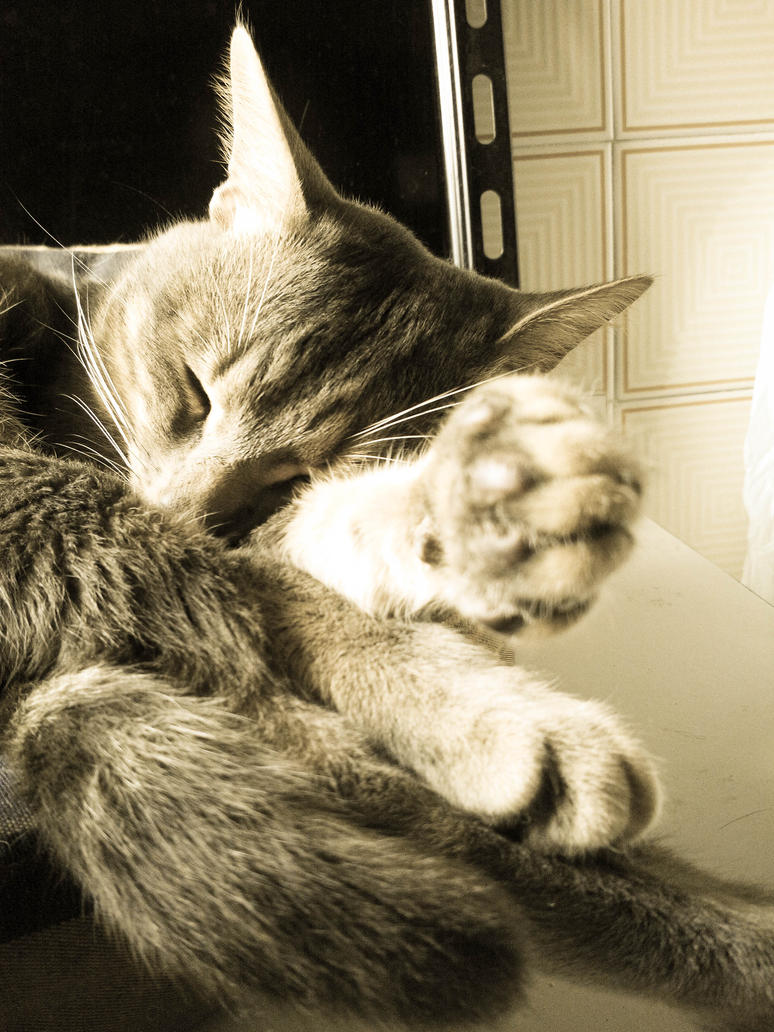 sleep deep by hermio