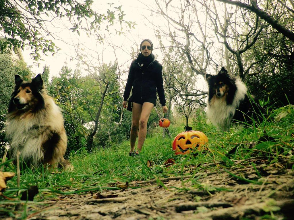 Happy Halloween! by hermio