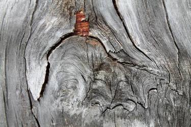 Layered Wood 2