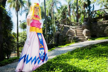 Toon Zelda cosplay by LayzeMichelle