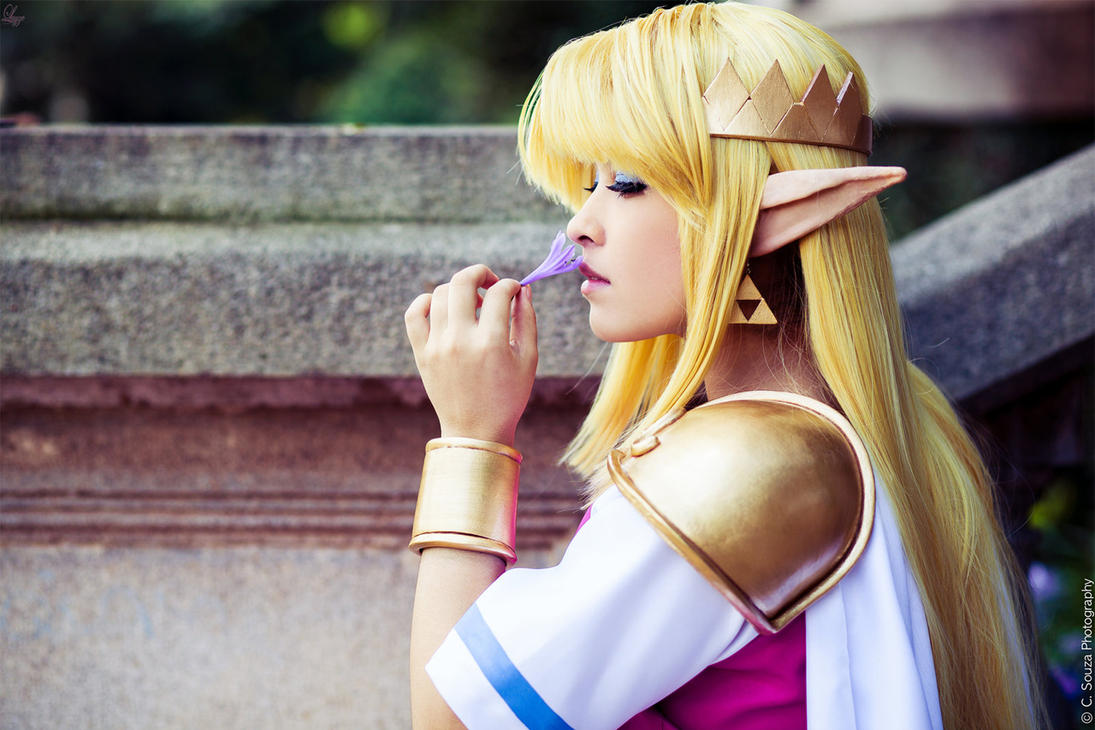 Princess Zelda Cosplay - A Link Between Worlds by LayzeMichelle