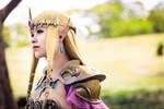 Queen Zelda from Hyrule Warriors