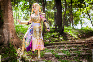 Hyrule Warriors Zelda by LayzeMichelle