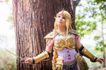 Hyrule Warriors Zelda cosplay