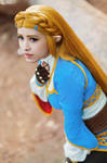 Zelda from Breath of the Wild