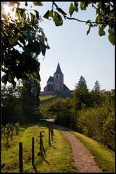 Afternoon stroll in Alsace by 2Stupid2Duck
