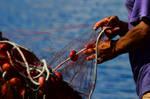 Mending the net