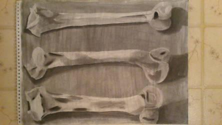 Art Assignment - Anatomy by heart4art7