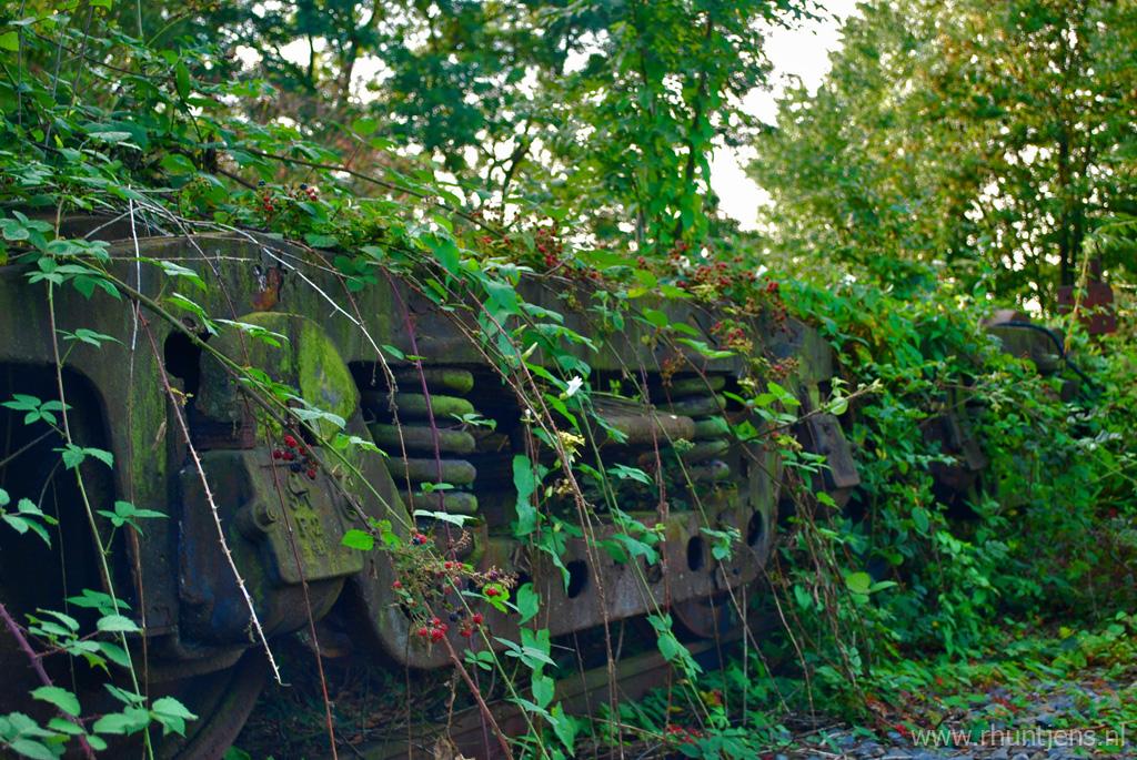 Overgrown Carrage by RichardRH
