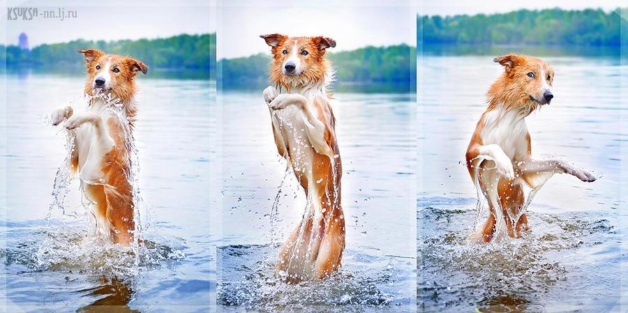 Dance in water by Ksuksa-Raykova