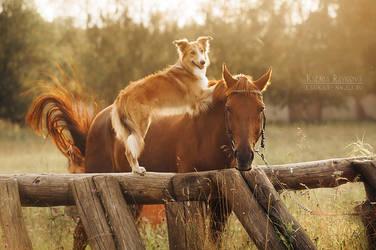 Sweet cowboy! by Ksuksa-Raykova