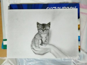 alexoah's Profile Picture