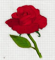 Lost Rose by V-Bonecrasher