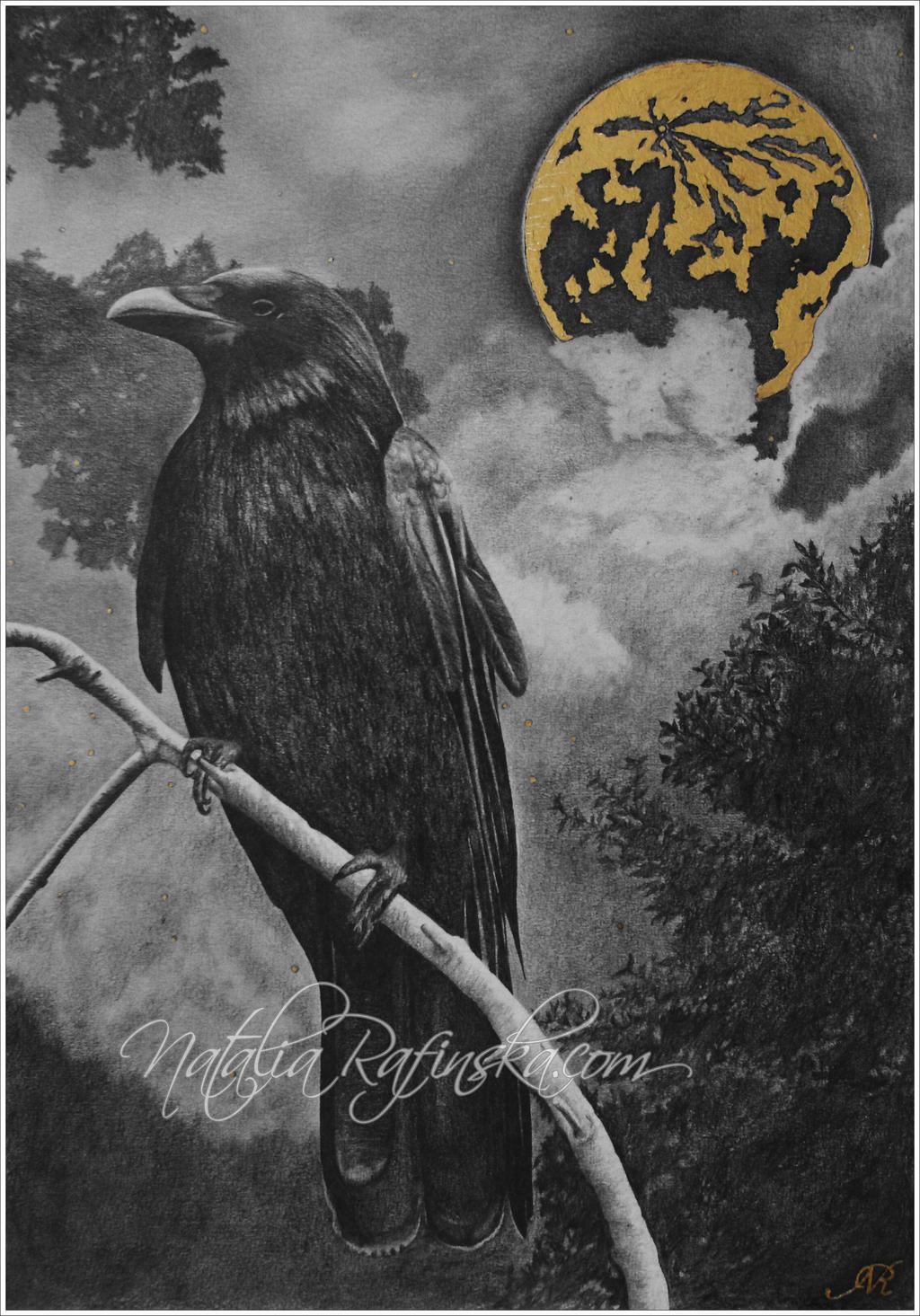 Crow by NataliaRafinska