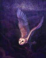 Barn Owl by arnjeca