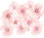 [RES] Pink Flowers PNG