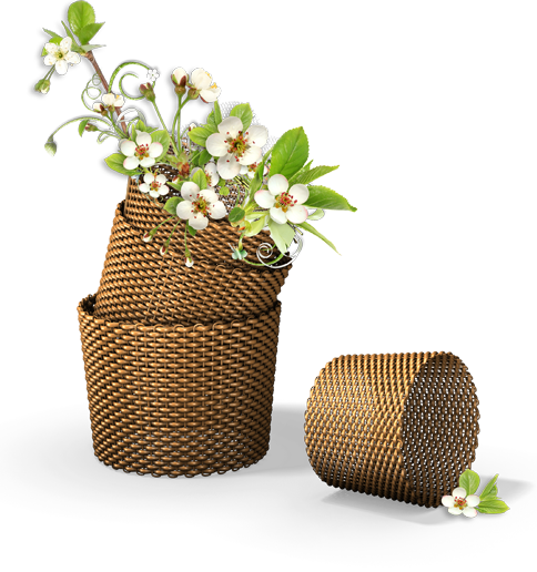 _res__flowers_in_the_basket_png_by_hanabell1-d6lgw1v