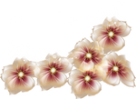 [RES] Brown Flowers PNG