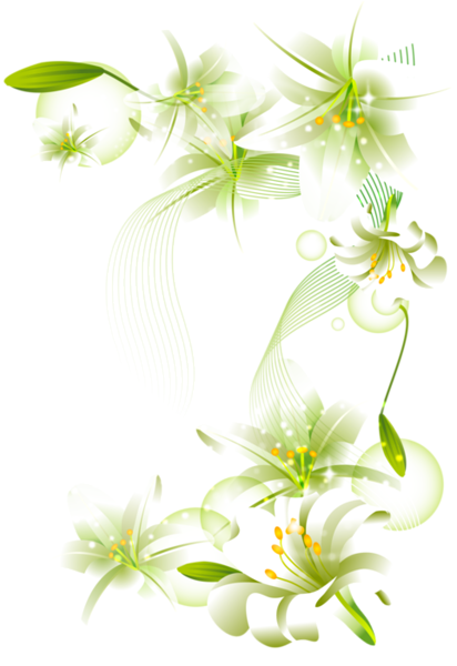 flower clipart with transparent background - photo #44
