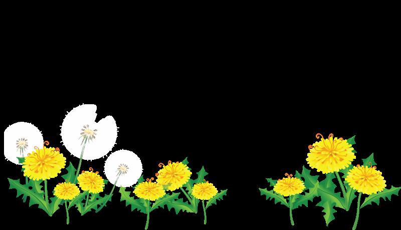 [Res] Flower Border by HanaBell1 on DeviantArt