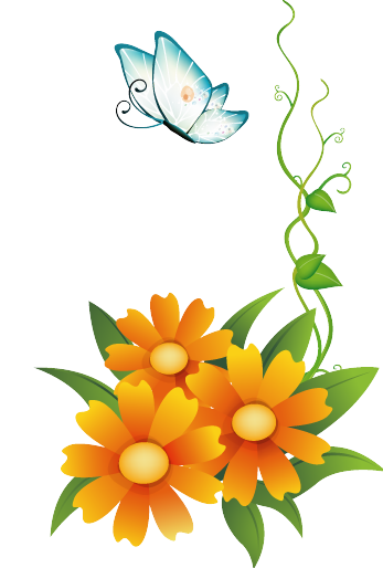 RES Orange Flowers With Butterfly By HanaBell1 On DeviantArt