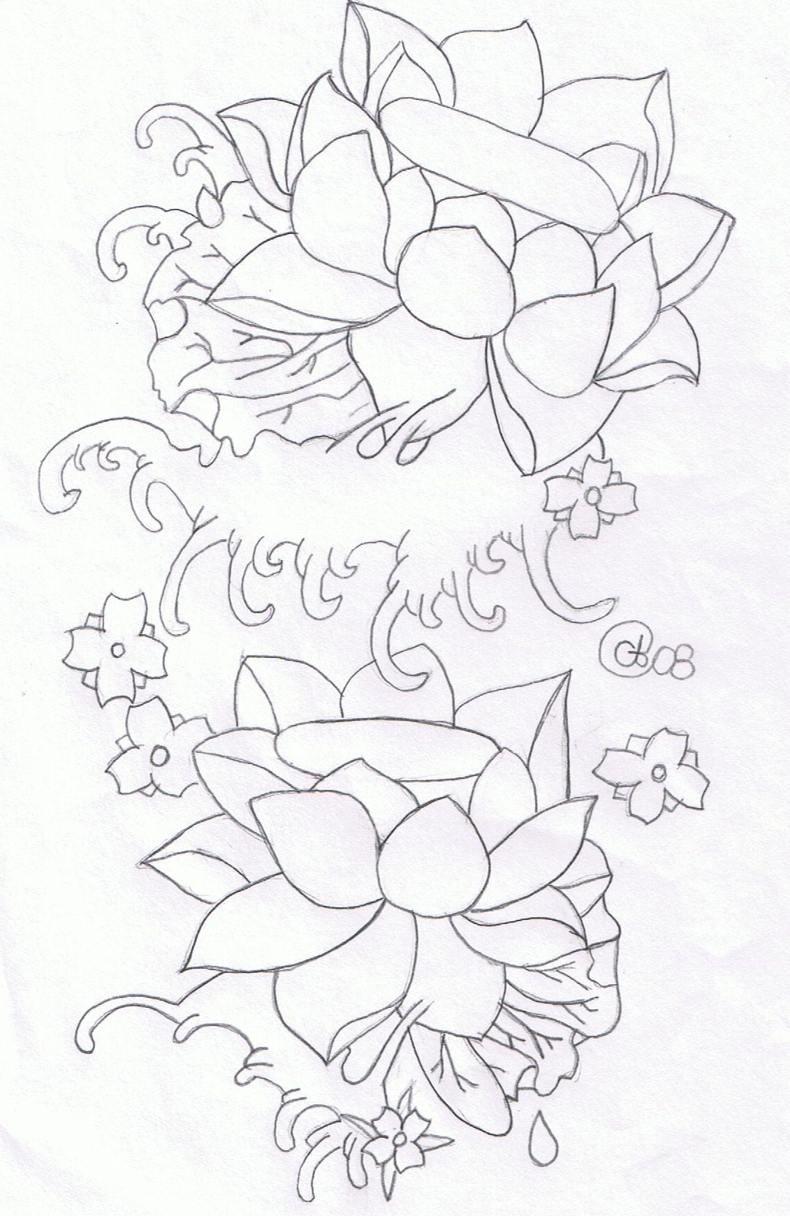 Water lotus flowers by cyndylouhous on deviantart water lotus flowers by cyndylouhous water lotus flowers by cyndylouhous izmirmasajfo