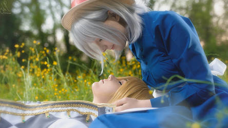 Howl's Moving Castle - Howl and Sophie 2