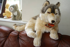 WWF Large wolf plush by Mimex Brands and Labels by Huskyplush