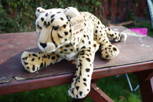 Born in Africa plush Cheetah