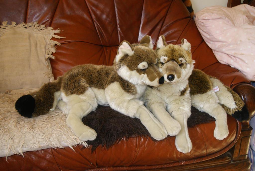 FAO Schwarz wolves. by Huskyplush on DeviantArt
